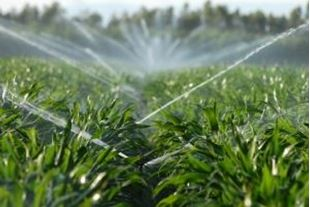 Picture for category Wash Irrigation
